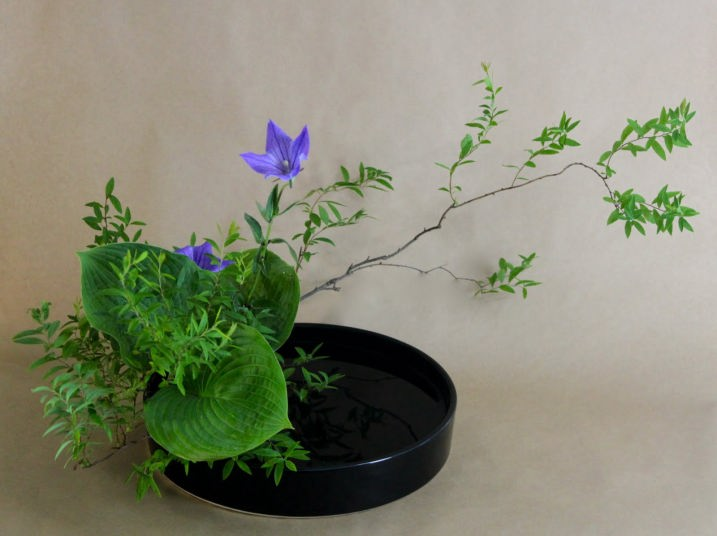 Ikebana japanese flower arrangement for Landscape arrangement